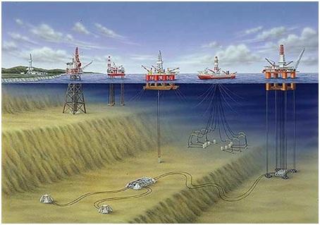 Origen del Petróleo: teoría biótica (orgánica) | Colectivo ...