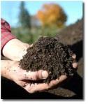 Post El desecho de la materia orgánica