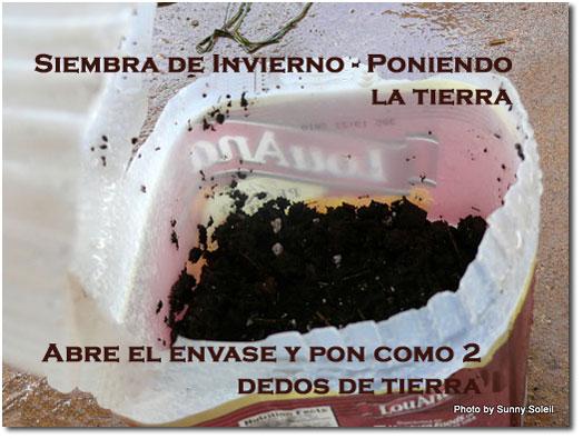 Post Siembra de Invierno la germinación de forma natural 4
