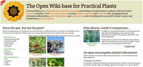 Post Wiki base de datos de plantas prácticas