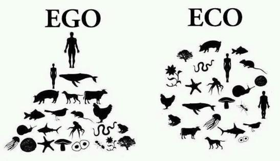 Post Eco & Ego