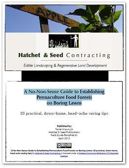 Post una guia con sensibilidad para establecer bosques comestibles de permacultura en tierras abandonadas