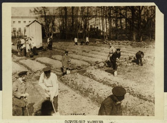 Nuestros cultivos de Ayer y Hoy_Zar Nicolas II con su familia 1917