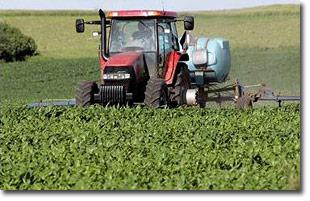 Post Los cultivos modificados genéticamente y el agua una receta para el desastre