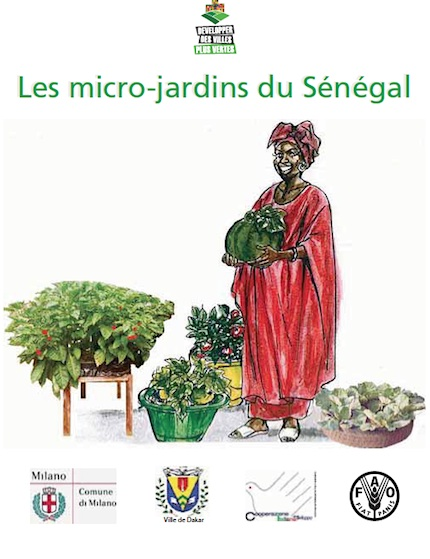 Post Los microjardines del Senegal