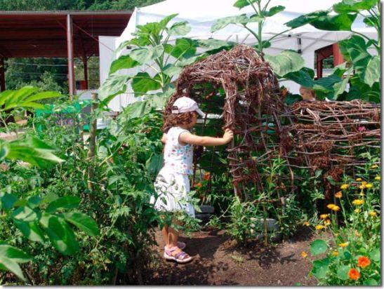 Post Tuneles vivientes trabajando con la naturaleza