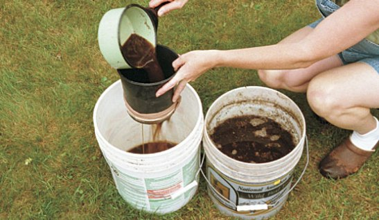Post Una receta simple para hacer compost tea
