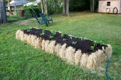 El cultivo en balas de paja colectivo sustan for Straw bale gardening joel karsten